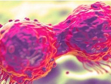 qelizat kancerogjene
