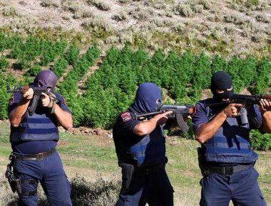Policia antidroge