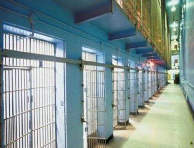 burgu i kretes