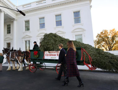ct-white-house-christmas-tree-20171121-001