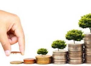 investimet e huaja