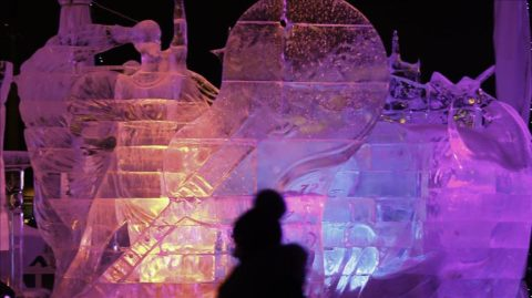 festivali i akullit