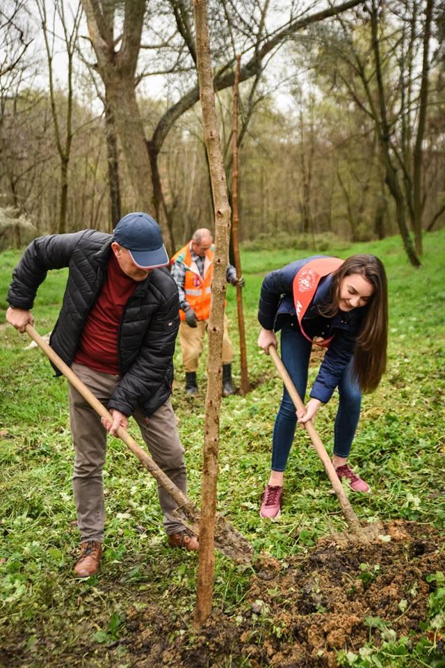 Nisma e Bashkisë  edhe Miss Shqipëria mbjell pemë tek parkun e Liqenit Artificial