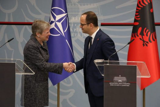 Bushati Nato