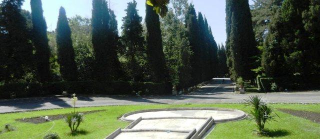 thumbnail_pallati brigadave (4)