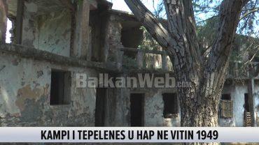 Burgu I Tepelenes