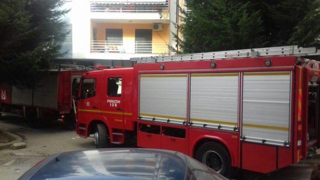 Zjarrfikese Tirane