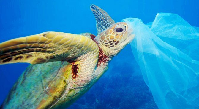 2018 Plastica Ambiente