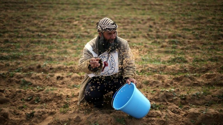 Izrael Palestine Gaza