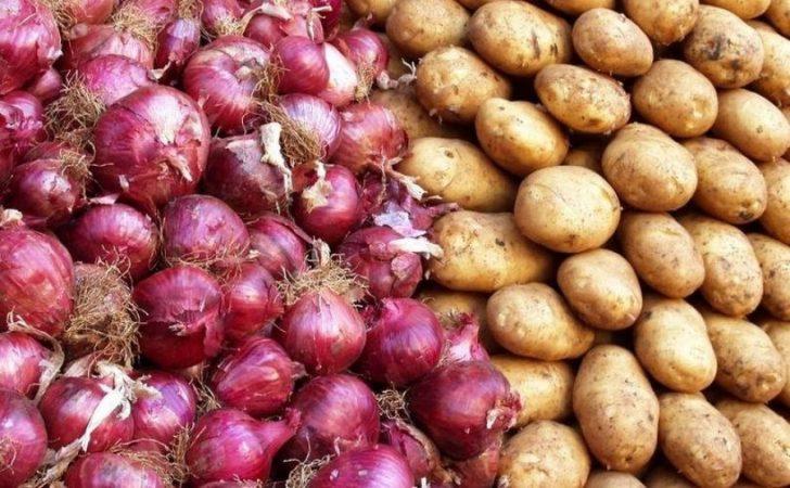 Auto Potatoes And Onions 8091550474734