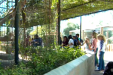 Arizona Zoo