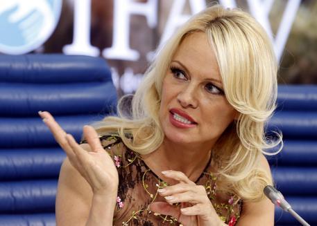 Pamela Anderson Attends Ifaw Presser