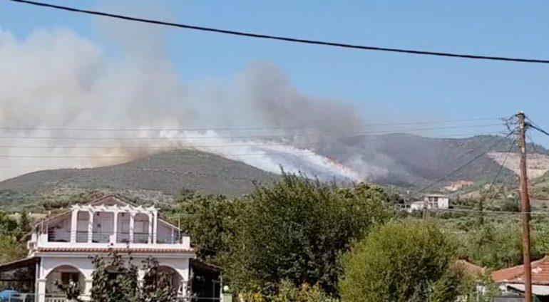 2019 09 15t191405z 1 Lynxmpef8e0pu Rtroptp 3 Greece Wildfire Zakynthos