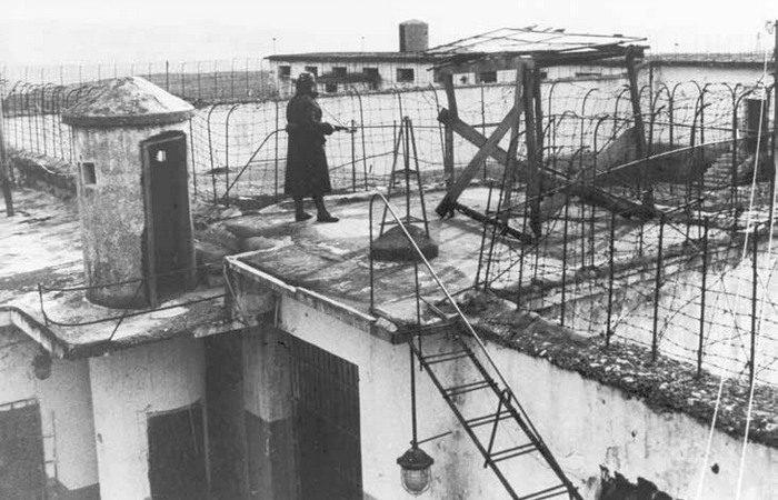 Burgu Burrelit 1