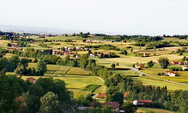 Montaldo