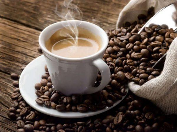 Kafe 696x522