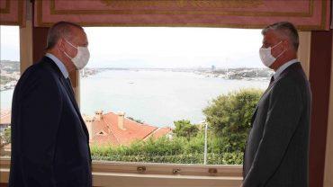 Erdogan Thaci 1