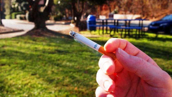 Vietato Fumo Allaperto 1 696x392