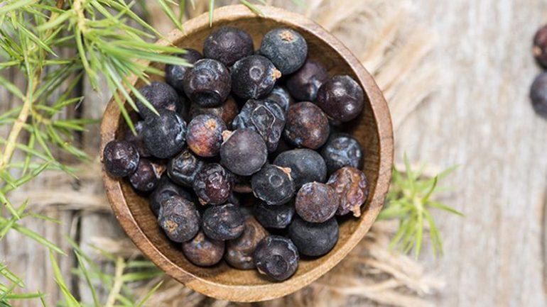 Substitutes For Juniper Berries 780x405 1 780x439