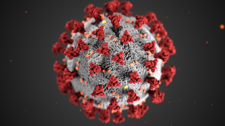Coronavirus 3d Illustration By Cdc 1600x900