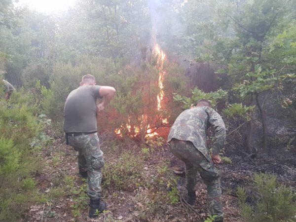 Zjarri Zheje, Kurbin (1)