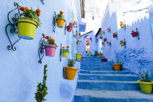 Marok