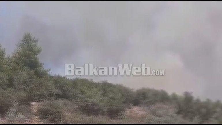 Zjarr Ne Mamurras