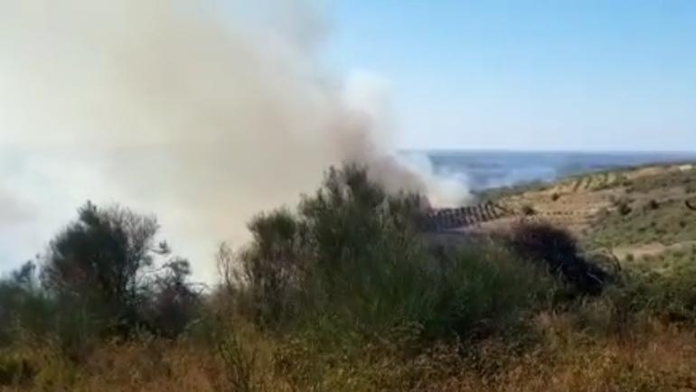Zjarri Fier